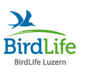 BirdLife Luzern